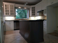 Kitchen cabinets refinishing we are #1 in the area !!!
