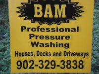PROFESSIONAL HOUSE & DECK WASHING HAVE IT NEW AGAIN