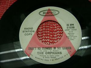 The Orphans   ‎– There's No Flowers In My Garden  1968 45 rpm