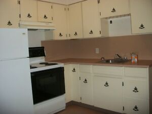 Apartments condos for sale or rent in quesnel real - Looking for one bedroom apartment for rent ...