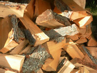 pine firewood well seasoned for sale