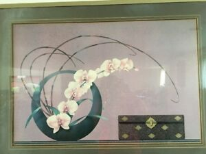 Fine Art Print: Orchid