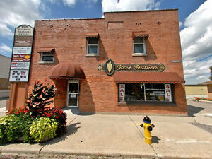 Charming Renovated 2 Bed Suite Near the Riverfront Park - $750.0