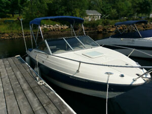 FOR SALE: 2009 Bayliner Discovery 192 Cuddy