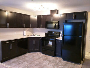 CORNER UNIT! Fully Furnished 2Bed 2Bath Steps From Clareview LRT