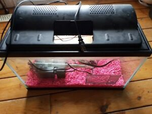 10 Gal Fish tank with hood, filter and heater