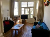 One double room available in large, friendly house!