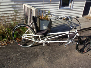 Easy Racer recumbent bicycle for sale