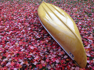 14 ft flat bottom squareback canoe $300 firm!