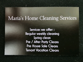 House and business cleaner