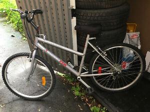 Sportek Ridgerunner bike