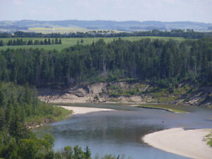 REDUCED TO $950,000, 130.5 ACRES ALONG THE RED DEER RIVER