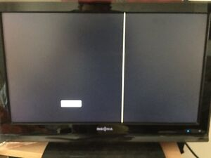"""22"""" insignia flat screen with line"""
