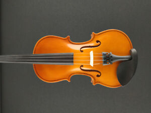 Entry Level Violin - All Sizes