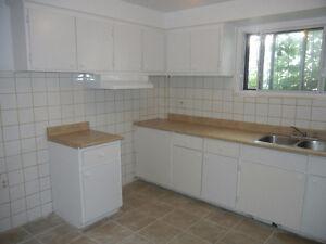Belle 3 1/2 appartement renover en demi- sous-sol