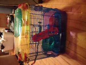 Hamster cage+ accessories for sale