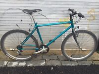 1994 Saracen Andes mountain bike