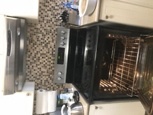 Frigidaire Electric Range and Oven with Allure Hood GREAT CNDTN