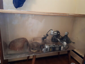 Reptile tank and equipment
