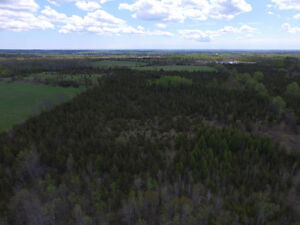 21 acres on McCullough Road
