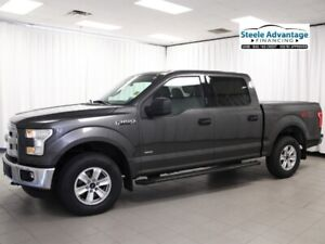 2015 Ford F-150 XLT - 4x4 Priced to Sell!!