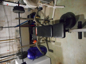 Benchpress and 100lbs weights for sale