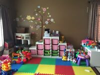 Home daycare in Hagersville has openings