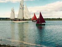 CHEAP FIRST CARAVAN, Steeple Bay, Southend, Clacton, Essex, Hit the Link-->