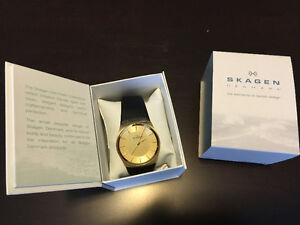 Skagen Mens Watch- New in Box!