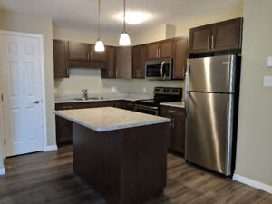 2 and 3 Bedrooms for Rent Pet Friendly - July 1st