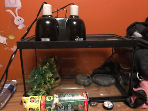 Gecko tank & day/night lamp and feeding accessories with foliag.