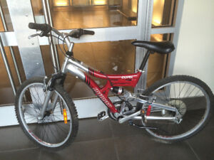 """24"""" Bike Infinity Cork with new brakes and more items for sale"""