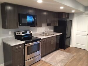 Beautiful 4 yr old UNIVERSITY area 2 bedroom basement suite