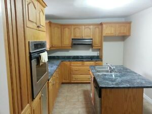 Private room in house available immediately Cambridge Kitchener Area image 2