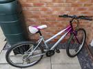 teen / lady bike