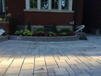 Immaculate Landscaping • Book Now & Save 10%