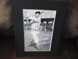 Ted Williams Print in Frame