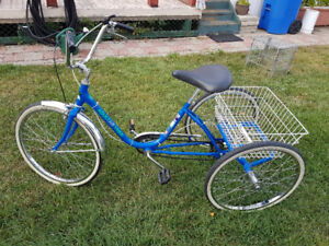 Workman adult 4 speed tricycle