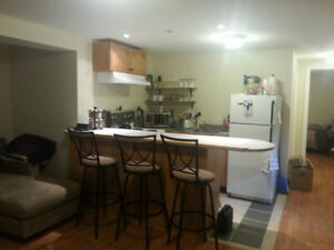 2 Bedroom Bright Burlington Basement w/ Gas FP Available Nov 30