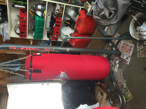 A Punch Bag with Stands and Gloves for Sale