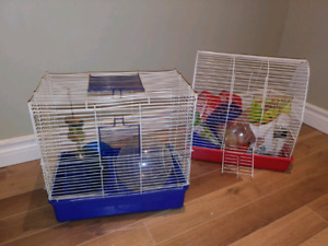 Cages hamsters