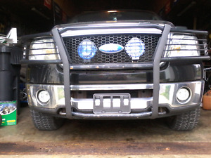 Ford brush guard