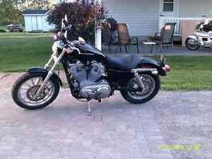 2005 Harley Sprtster