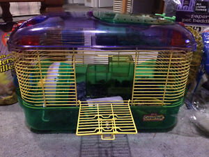 2 Mice + cage & accessories London Ontario image 1
