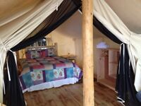 Luxury Camping /Glamping at Oakwood Escape, Dunnville, Ontario