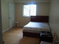 Large room for rent,Finch/Don mill,Seneca College(MALE).,Seven m