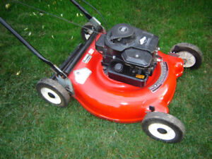 Well Maintained Gas Lawnmower