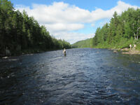 5 rods for 4 days on the L'il Sou'west Miramichi
