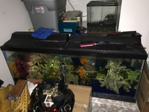 50 gal tank and everything included