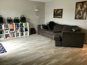 Room for Rent in Apartment